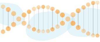 Brand_DNA.jpg