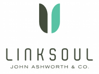Linksoul Teams Up with RepSpark Systems forWholesale and Rep B2B Commerce Platform